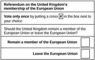 brexit4- erol gürcan